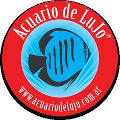 Acuario de LuJo